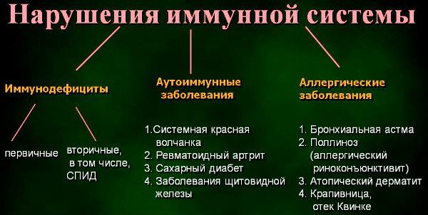схема заболеваний иммунной системы