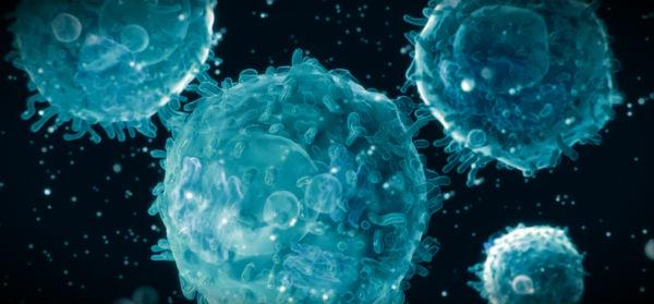 Врожденный и приобретенный иммунитет различия thumbnail