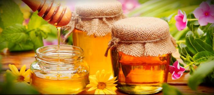 Польза мёда для иммунитета