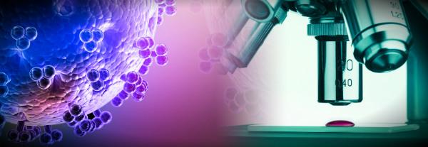 коррекция иммунитета