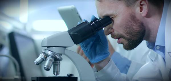 иммунотоксикология ученые