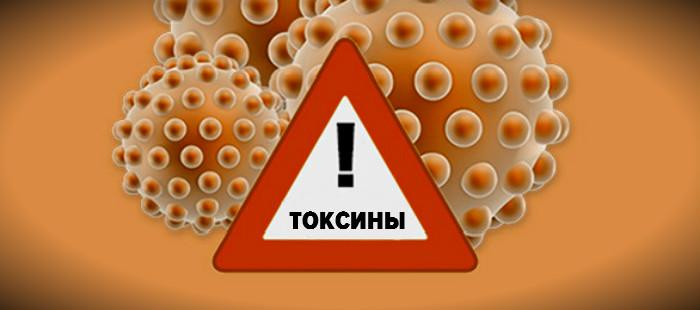 Иммунотоксикология. Влияние токсинов на иммунную систему