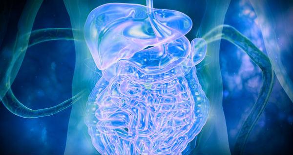 иммунитет от паразитов
