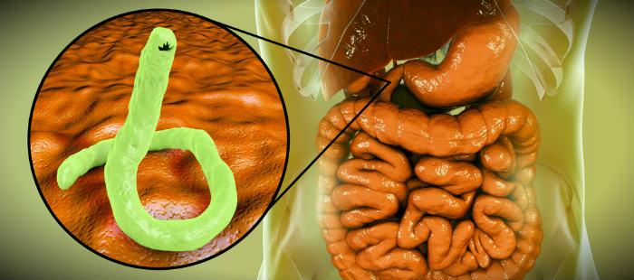 паразиты и иммунитет