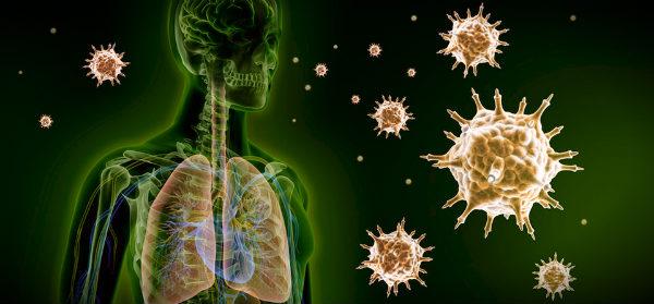 организм человека атакуют вирусы
