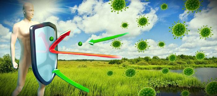 """Иммунитет летом: что нужно знать о """"летнем"""" иммунитете?"""