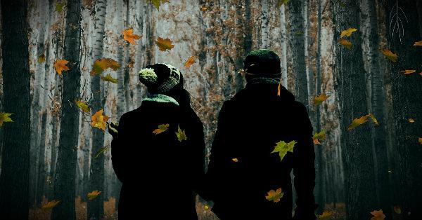 осенняя хандра в лесу