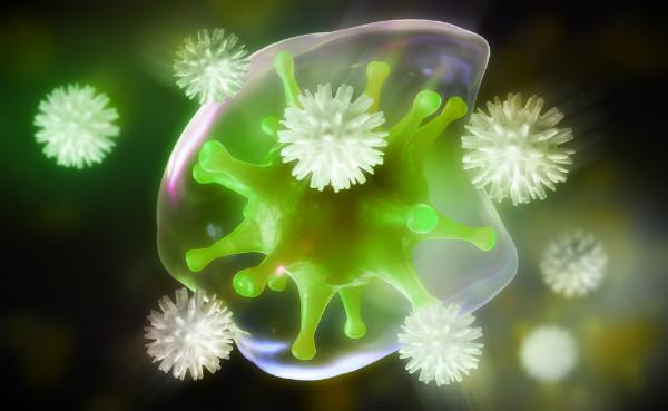 атакуемая клетка организма