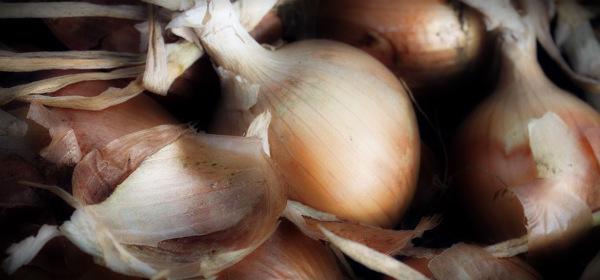 луковица и шелуха