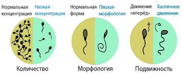 сперма отклонения