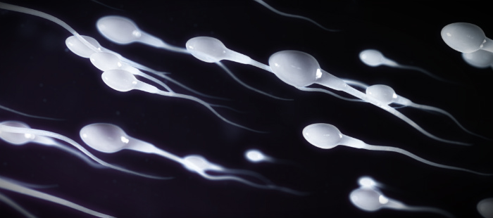 улучшить качество спермы