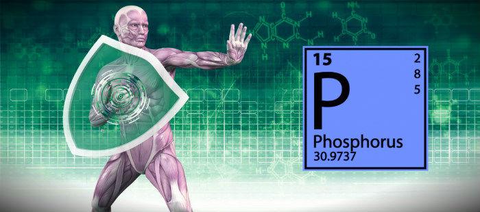 фосфор для иммунитета